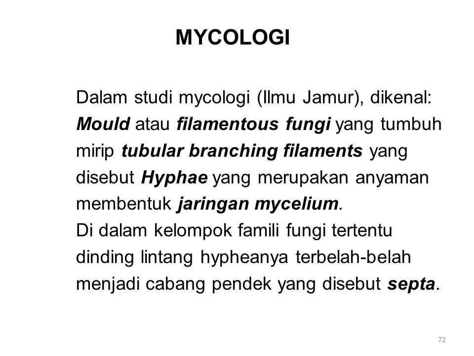 MYCOLOGI Dalam studi mycologi (Ilmu Jamur), dikenal: Mould atau filamentous fungi yang tumbuh mirip tubular branching filaments yang disebut Hyphae ya