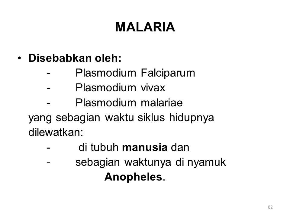 MALARIA Disebabkan oleh: -Plasmodium Falciparum -Plasmodium vivax -Plasmodium malariae yang sebagian waktu siklus hidupnya dilewatkan: - di tubuh manu