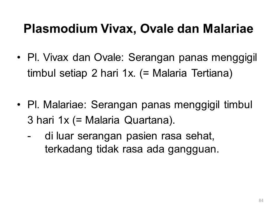 Plasmodium Vivax, Ovale dan Malariae Pl. Vivax dan Ovale: Serangan panas menggigil timbul setiap 2 hari 1x. (= Malaria Tertiana) Pl. Malariae: Seranga