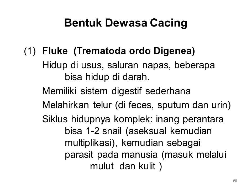 Bentuk Dewasa Cacing (1) Fluke (Trematoda ordo Digenea) Hidup di usus, saluran napas, beberapa bisa hidup di darah. Memiliki sistem digestif sederhana