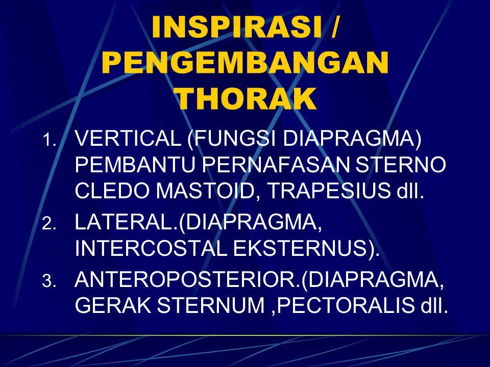 INSPIRASI / PENGEMBANGAN THORAK 1. VERTICAL (FUNGSI DIAPRAGMA) PEMBANTU PERNAFASAN STERNO CLEDO MASTOID, TRAPESIUS dll. 2. LATERAL.(DIAPRAGMA, INTERCO