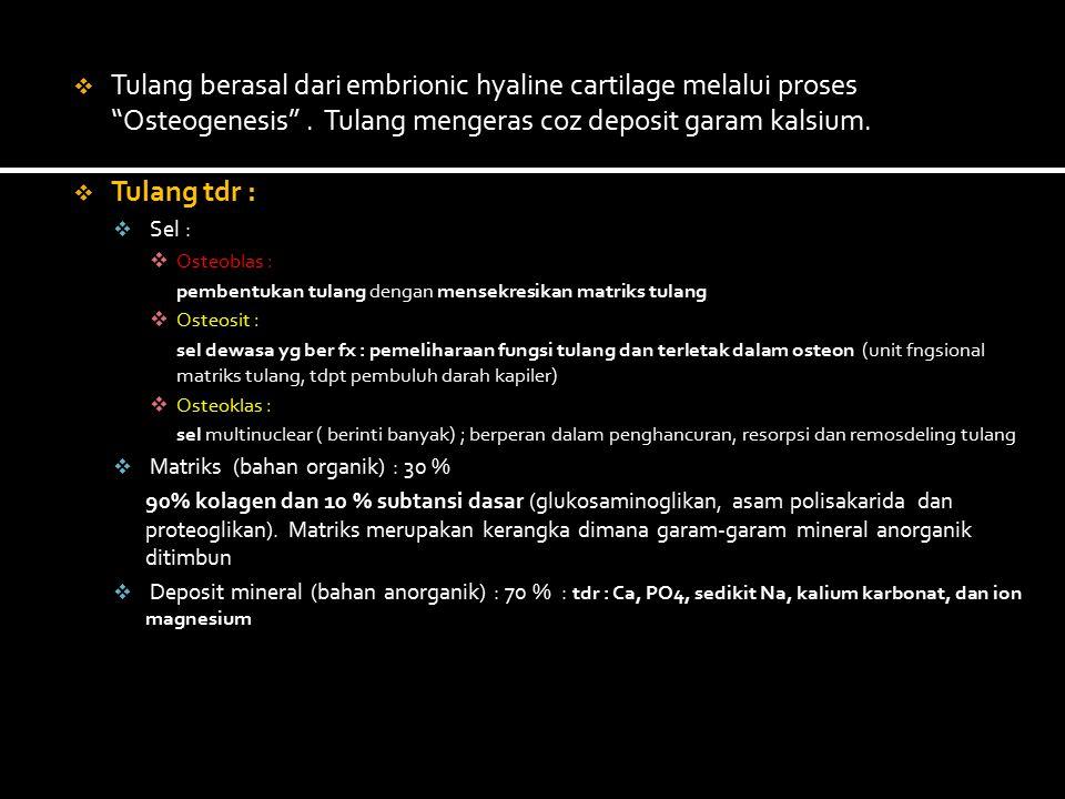 a.Radiologi dan imaging studies 1. X-ray a.