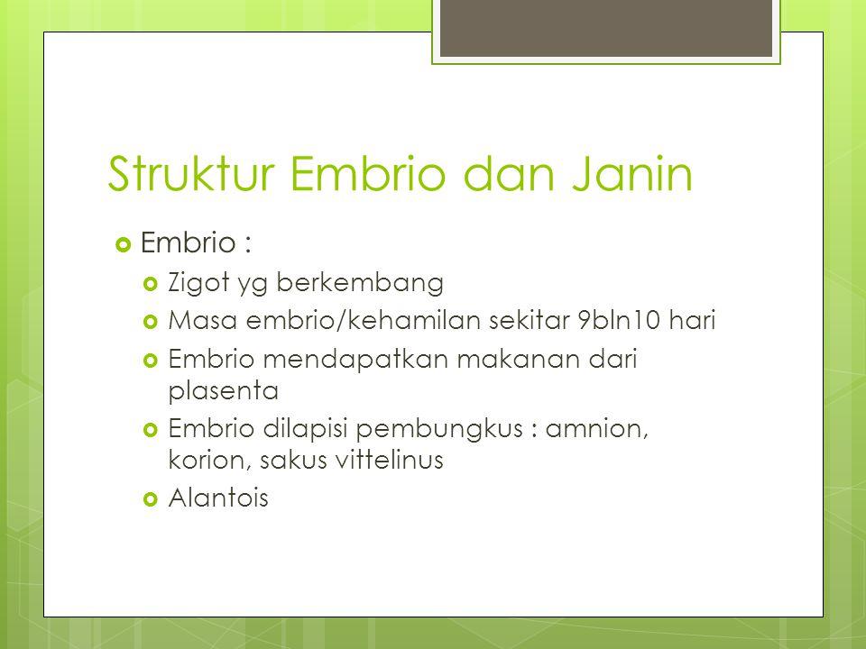 Struktur Embrio dan Janin  Embrio :  Zigot yg berkembang  Masa embrio/kehamilan sekitar 9bln10 hari  Embrio mendapatkan makanan dari plasenta  Em