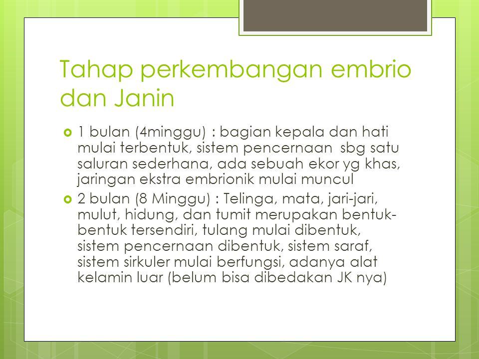 Tahap perkembangan embrio dan Janin  1 bulan (4minggu) : bagian kepala dan hati mulai terbentuk, sistem pencernaan sbg satu saluran sederhana, ada se