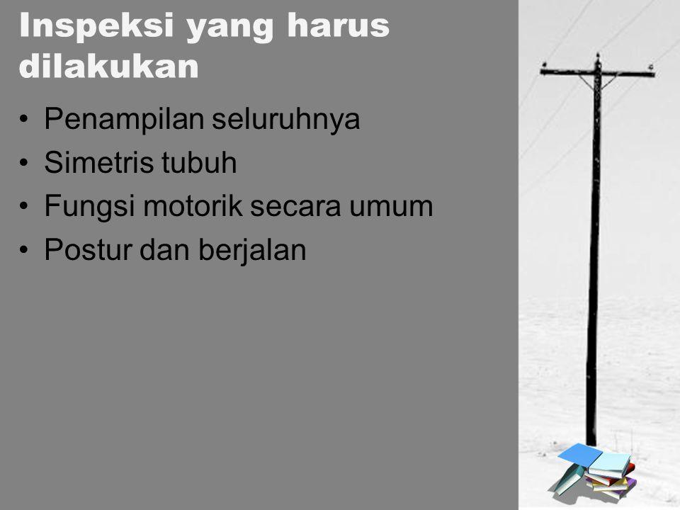 Penampilan seluruhnya Simetris tubuh Fungsi motorik secara umum Postur dan berjalan Inspeksi yang harus dilakukan