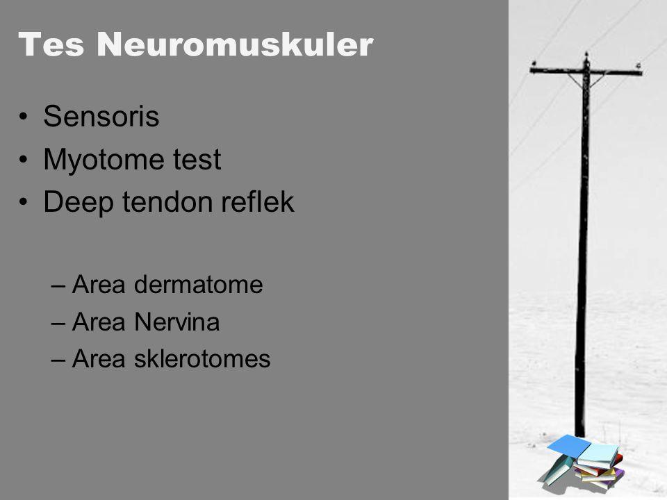 Tes Neuromuskuler Sensoris Myotome test Deep tendon reflek –Area dermatome –Area Nervina –Area sklerotomes