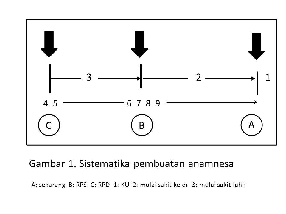 A 123 4 5 C 6 7 8 9 B Gambar 1. Sistematika pembuatan anamnesa A: sekarang B: RPS C: RPD 1: KU 2: mulai sakit-ke dr 3: mulai sakit-lahir