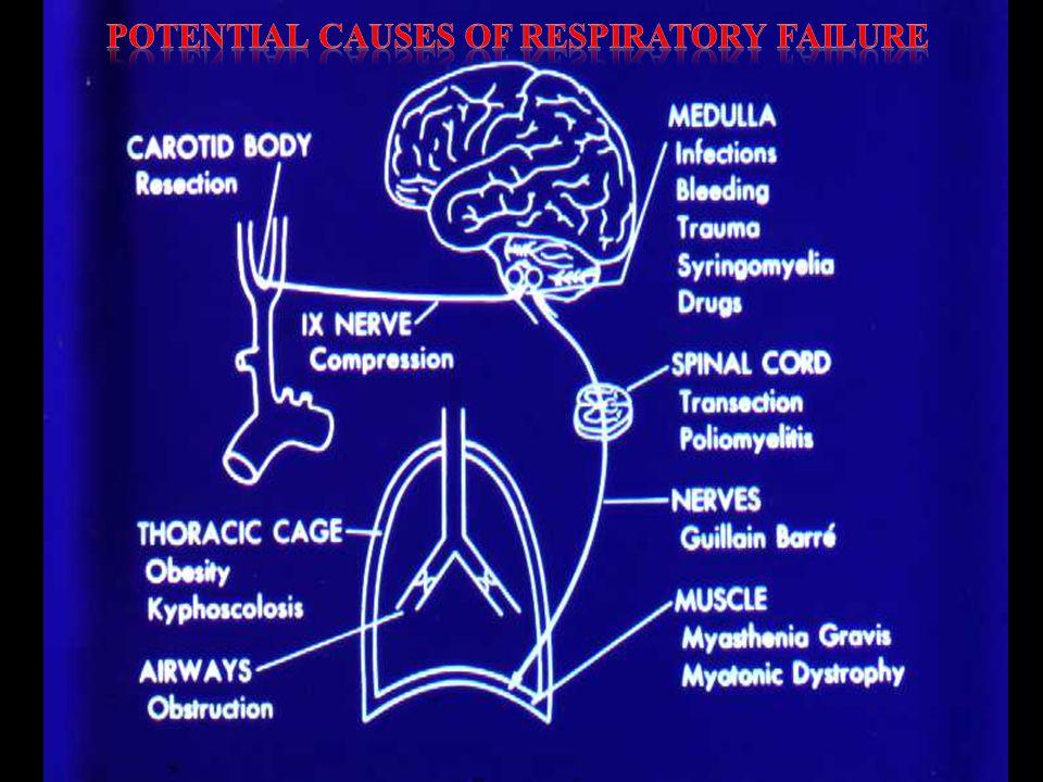 Respirasi adalah :  Peristiwa masuk udara (O 2 ) ke dalam paru  Proses metabolisme  Pengeluaran CO 2 dan H 2 O hasil metabolisme FISIOLOGI
