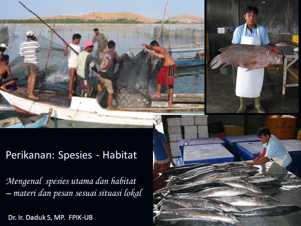 Perikanan: Spesies - Habitat Mengenal spesies utama dan habitat – materi dan pesan sesuai situasi lokal Dr. Ir. Daduk S, MP. FPIK-UB