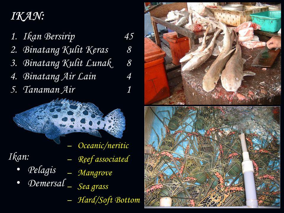 1.Ikan Bersirip 45 2.Binatang Kulit Keras 8 3.Binatang Kulit Lunak 8 4.Binatang Air Lain 4 5.Tanaman Air 1 Ikan: Pelagis Demersal IKAN: – Oceanic/neri