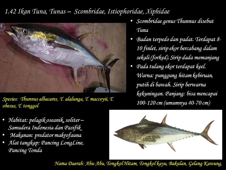 1.42 Ikan Tuna, Tunas – Scombridae, Istiophoridae, Xiphidae Nama Daerah: Abu-Abu, Tongkol Hitam, Tongkol kayu, Bakulan, Gelang Kawung, Habitat: pelagi
