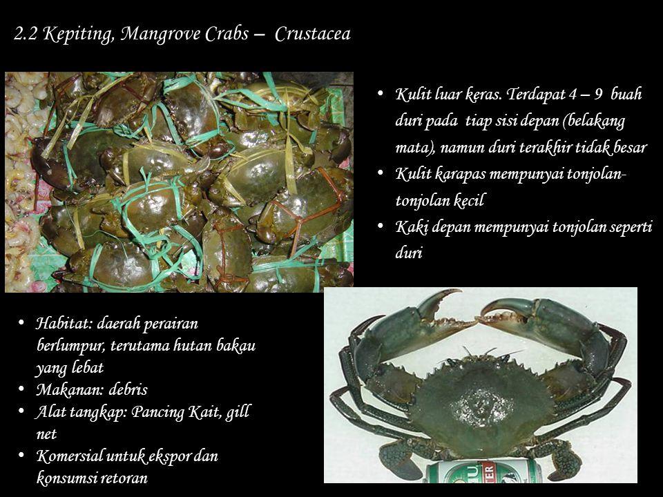 2.2 Kepiting, Mangrove Crabs – Crustacea Habitat: daerah perairan berlumpur, terutama hutan bakau yang lebat Makanan: debris Alat tangkap: Pancing Kai