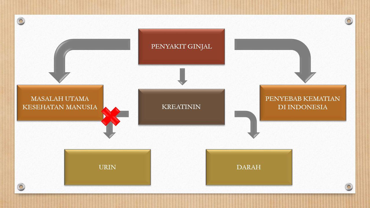 PENYAKIT GINJAL PENYEBAB KEMATIAN DI INDONESIA KREATININ URIN DARAH MASALAH UTAMA KESEHATAN MANUSIA MASALAH UTAMA KESEHATAN MANUSIA
