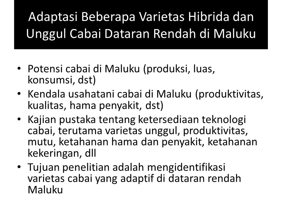 Adaptasi Beberapa Varietas Hibrida dan Unggul Cabai Dataran Rendah di Maluku Potensi cabai di Maluku (produksi, luas, konsumsi, dst) Kendala usahatani