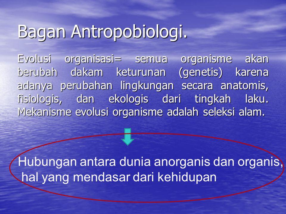 Bagan Antropobiologi. Evolusi organisasi= semua organisme akan berubah dakam keturunan (genetis) karena adanya perubahan lingkungan secara anatomis, f