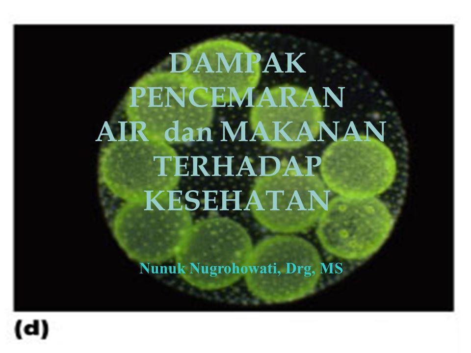 08/06/20151 DAMPAK PENCEMARAN AIR dan MAKANAN TERHADAP KESEHATAN Nunuk Nugrohowati, Drg, MS