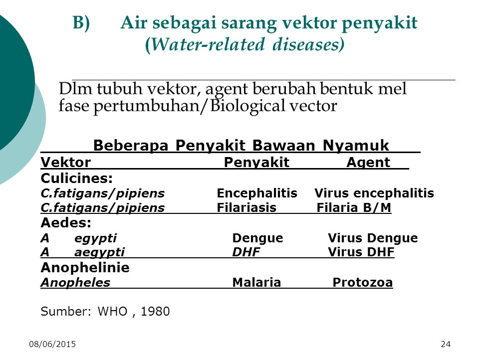 08/06/201524 B)Air sebagai sarang vektor penyakit ( Water-related diseases) Dlm tubuh vektor, agent berubah bentuk mel fase pertumbuhan/Biological vector _____Beberapa Penyakit Bawaan Nyamuk___ Vektor______________Penyakit______Agent__ Culicines: C.fatigans/pipiens Encephalitis Virus encephalitis C.fatigans/pipiens Filariasis Filaria B/M Aedes: A egypti DengueVirus Dengue A aegypti_______DHFVirus DHF Anophelinie Anopheles_______Malaria______Protozoa Sumber: WHO, 1980
