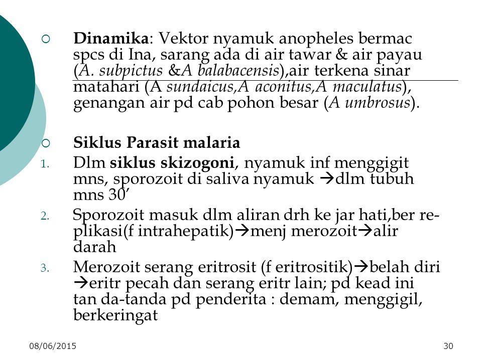 08/06/201530  Dinamika : Vektor nyamuk anopheles bermac spcs di Ina, sarang ada di air tawar & air payau ( A.