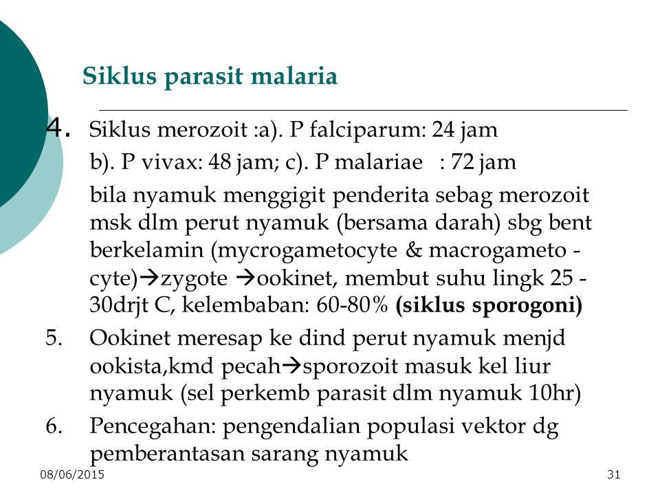 08/06/201531 Siklus parasit malaria 4. Siklus merozoit :a).