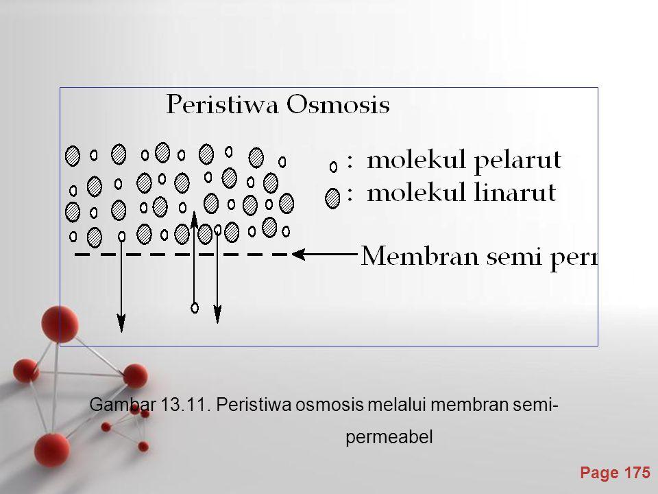 Page 175 Gambar 13.11. Peristiwa osmosis melalui membran semi- permeabel