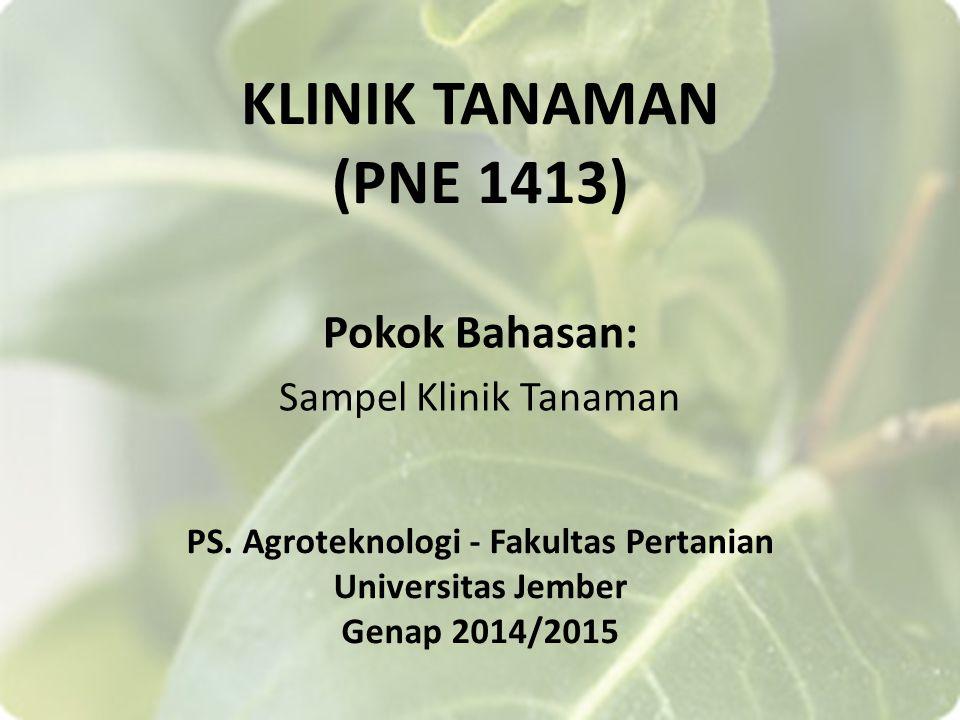 KLINIK TANAMAN (PNE 1413) Pokok Bahasan: Sampel Klinik Tanaman PS.