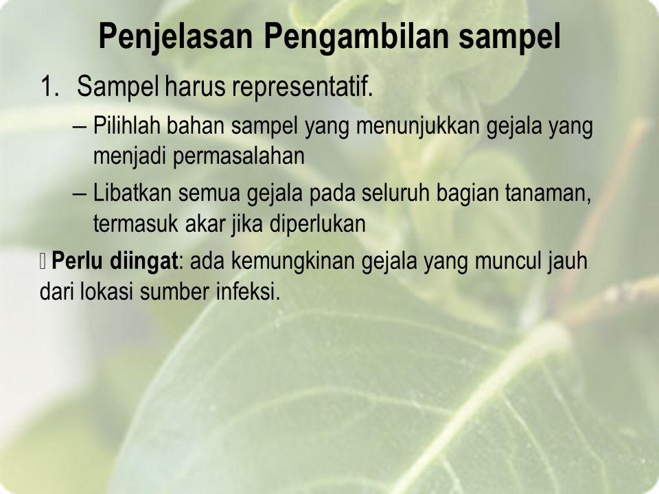 Penjelasan Pengambilan sampel 1.Sampel harus representatif.