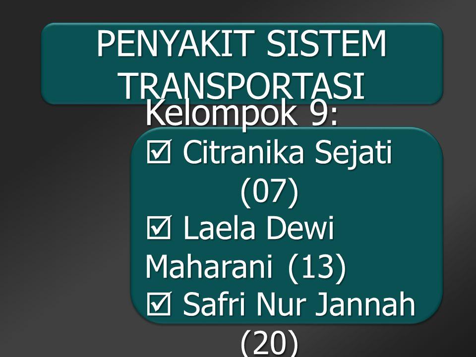 PENYAKIT SISTEM TRANSPORTASI Kelompok 9 :  Citranika Sejati (07)  Laela Dewi Maharani(13)  Safri Nur Jannah (20)