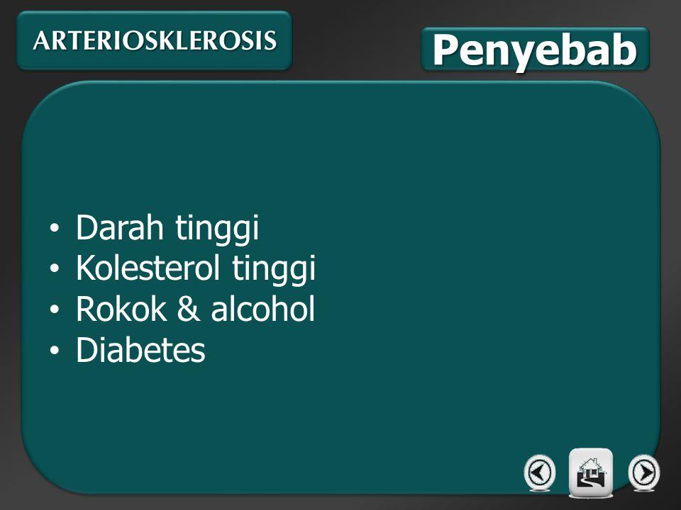Darah tinggi Kolesterol tinggi Rokok & alcohol Diabetes Darah tinggi Kolesterol tinggi Rokok & alcohol Diabetes PenyebabPenyebab