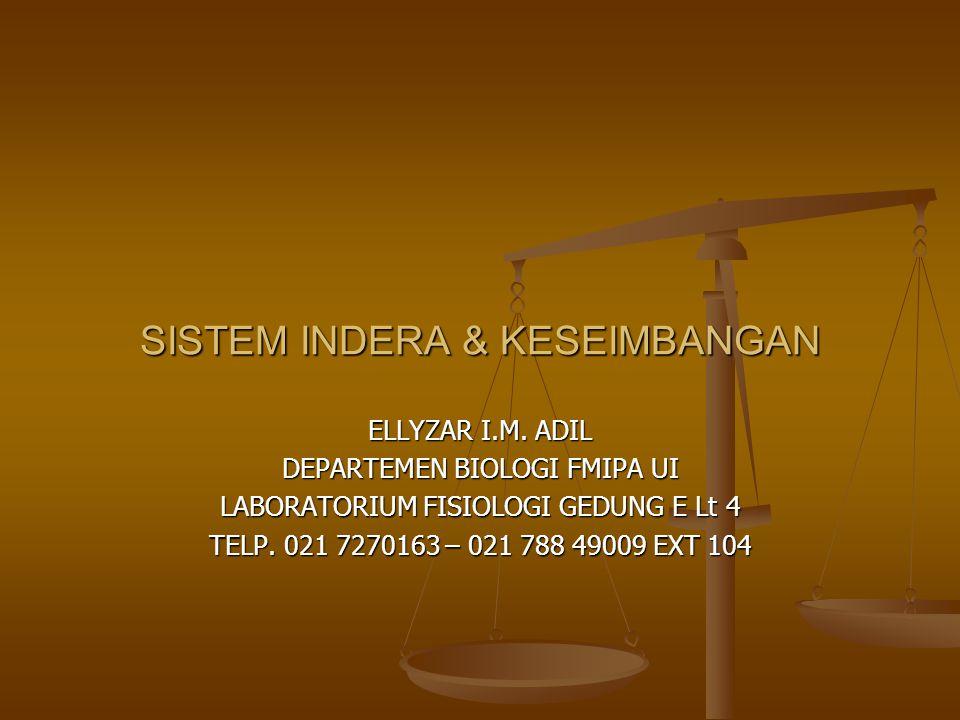 SISTEM INDERA & KESEIMBANGAN ELLYZAR I.M. ADIL DEPARTEMEN BIOLOGI FMIPA UI LABORATORIUM FISIOLOGI GEDUNG E Lt 4 TELP. 021 7270163 – 021 788 49009 EXT