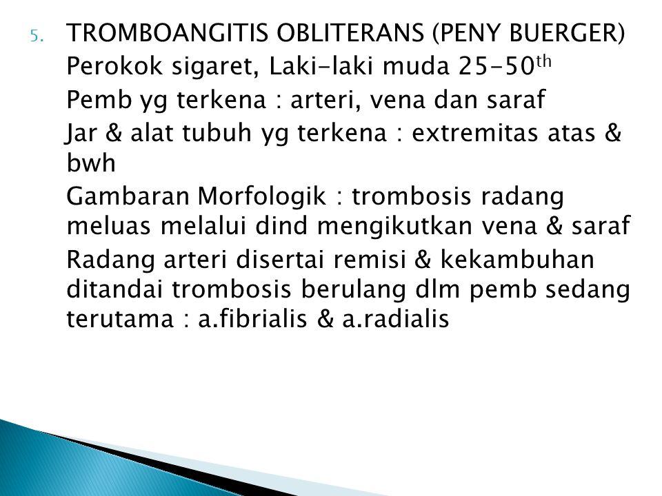 5. TROMBOANGITIS OBLITERANS (PENY BUERGER) Perokok sigaret, Laki-laki muda 25-50 th Pemb yg terkena : arteri, vena dan saraf Jar & alat tubuh yg terke