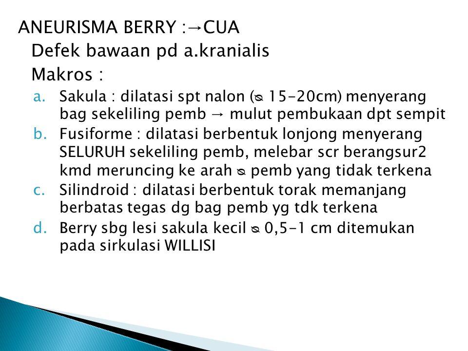 ANEURISMA BERRY :→CUA Defek bawaan pd a.kranialis Makros : a.Sakula : dilatasi spt nalon ( 15-20cm) menyerang bag sekeliling pemb → mulut pembukaan dp