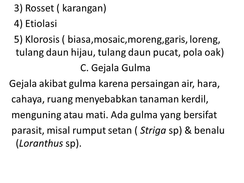 3) Rosset ( karangan) 4) Etiolasi 5) Klorosis ( biasa,mosaic,moreng,garis, loreng, tulang daun hijau, tulang daun pucat, pola oak) C. Gejala Gulma Gej