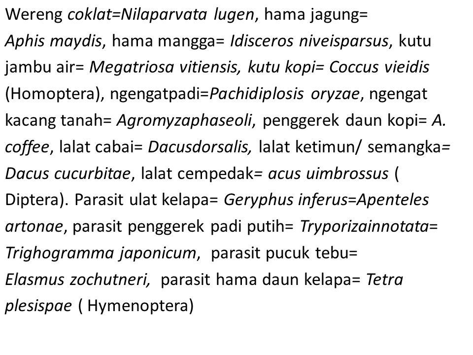 Wereng coklat=Nilaparvata lugen, hama jagung= Aphis maydis, hama mangga= Idisceros niveisparsus, kutu jambu air= Megatriosa vitiensis, kutu kopi= Cocc