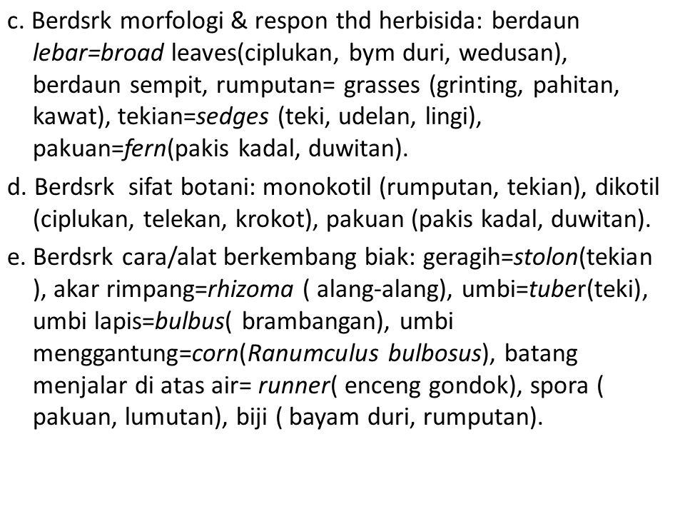 c. Berdsrk morfologi & respon thd herbisida: berdaun lebar=broad leaves(ciplukan, bym duri, wedusan), berdaun sempit, rumputan= grasses (grinting, pah