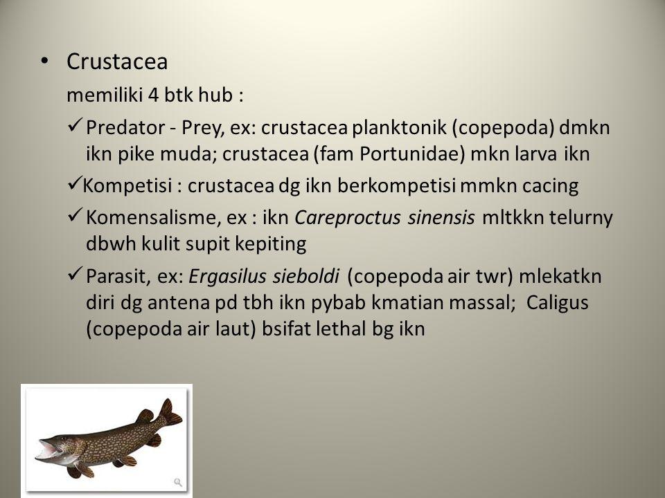 Crustacea memiliki 4 btk hub : Predator - Prey, ex: crustacea planktonik (copepoda) dmkn ikn pike muda; crustacea (fam Portunidae) mkn larva ikn Kompetisi : crustacea dg ikn berkompetisi mmkn cacing Komensalisme, ex : ikn Careproctus sinensis mltkkn telurny dbwh kulit supit kepiting Parasit, ex: Ergasilus sieboldi (copepoda air twr) mlekatkn diri dg antena pd tbh ikn pybab kmatian massal; Caligus (copepoda air laut) bsifat lethal bg ikn