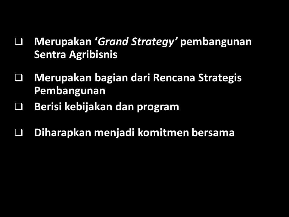  Merupakan 'Grand Strategy' pembangunan Sentra Agribisnis  Merupakan bagian dari Rencana Strategis Pembangunan  Berisi kebijakan dan program  Diha
