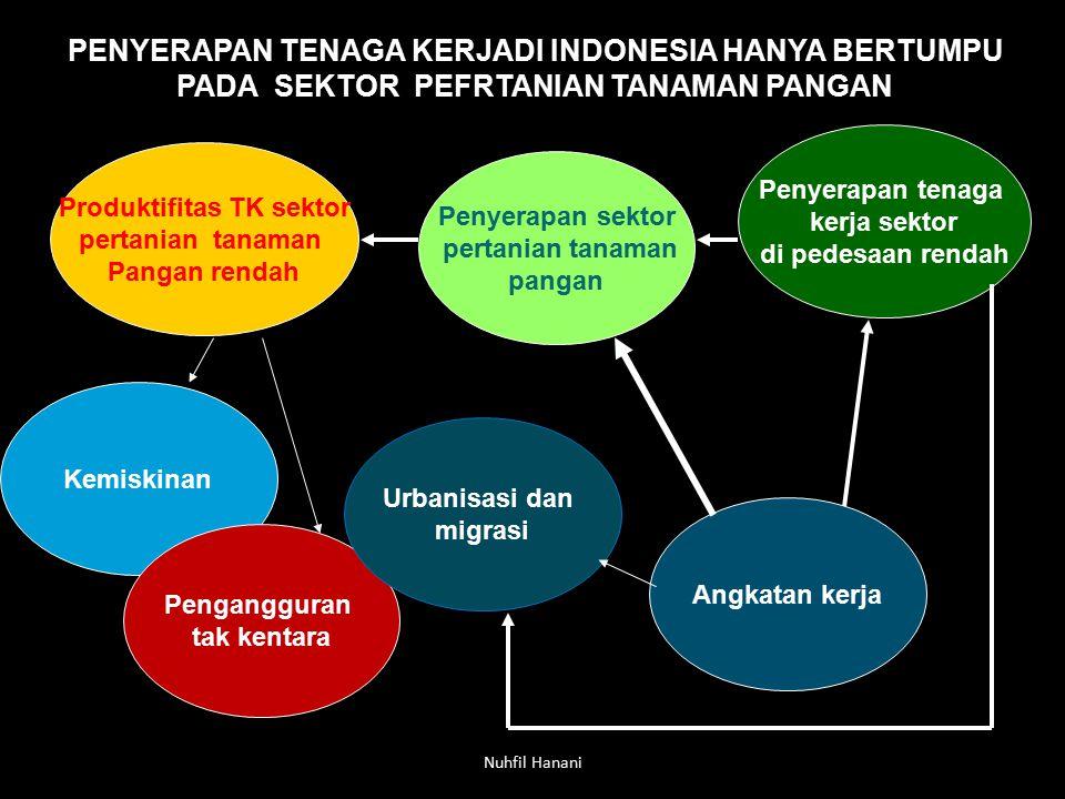 Nuhfil Hanani PENYERAPAN TENAGA KERJADI INDONESIA HANYA BERTUMPU PADA SEKTOR PEFRTANIAN TANAMAN PANGAN Produktifitas TK sektor pertanian tanaman Panga