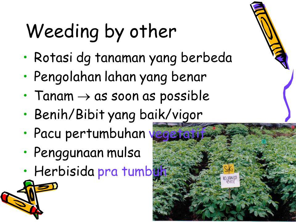 Weeding by other Rotasi dg tanaman yang berbeda Pengolahan lahan yang benar Tanam  as soon as possible Benih/Bibit yang baik/vigor Pacu pertumbuhan v