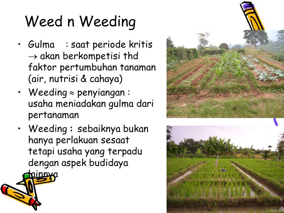 Weed n Weeding Gulma : saat periode kritis  akan berkompetisi thd faktor pertumbuhan tanaman (air, nutrisi & cahaya) Weeding  penyiangan : usaha men