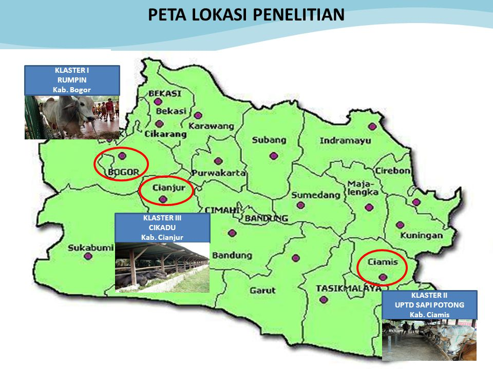 73 KLASTER III CIKADU Kab. Cianjur KLASTER I RUMPIN Kab. Bogor KLASTER II UPTD SAPI POTONG Kab. Ciamis PETA LOKASI PENELITIAN