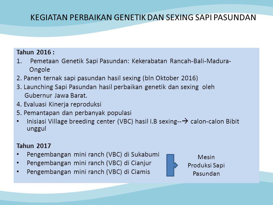 KEGIATAN PERBAIKAN GENETIK DAN SEXING SAPI PASUNDAN Tahun 2016 : 1.Pemetaan Genetik Sapi Pasundan: Kekerabatan Rancah-Bali-Madura- Ongole 2. Panen ter
