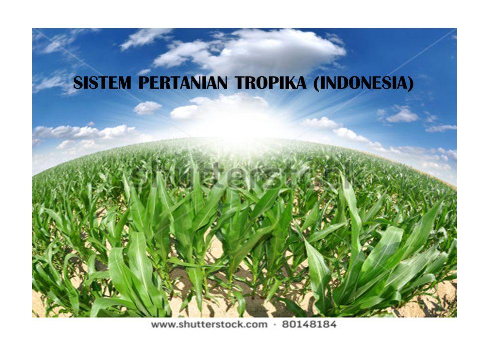 SISTEM PERTANIAN TROPIKA (INDONESIA)