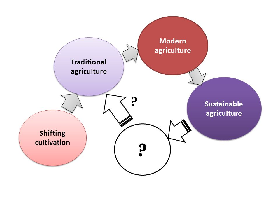 Shifting cultivation Sustainable agriculture Modern agriculture Traditional agriculture ? ?