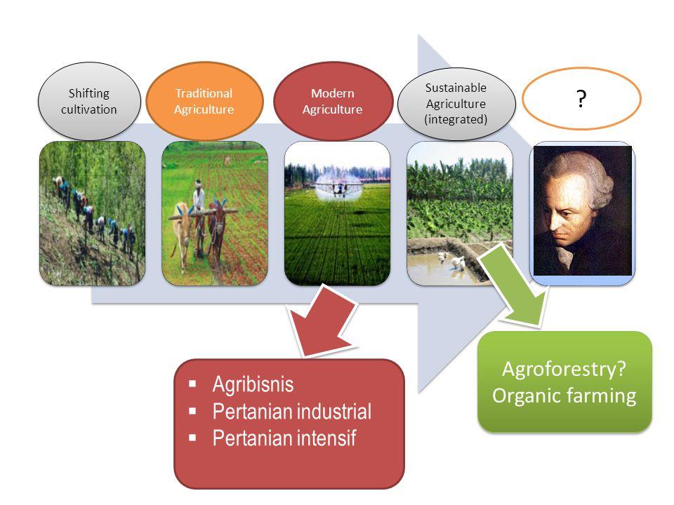  Agribisnis  Pertanian industrial  Pertanian intensif Agroforestry.
