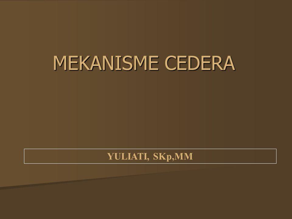 MEKANISME CEDERA YULIATI, SKp,MM