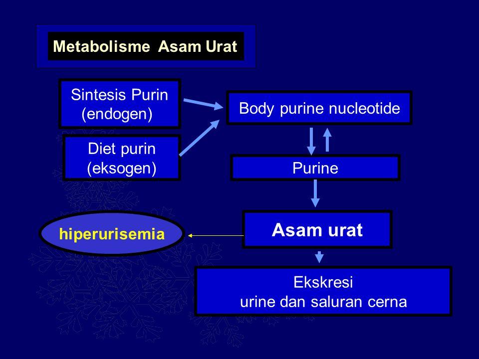 Metabolisme Asam Urat Sintesis Purin (endogen) Diet purin (eksogen) Body purine nucleotide Purine Asam urat Ekskresi urine dan saluran cerna hiperuris