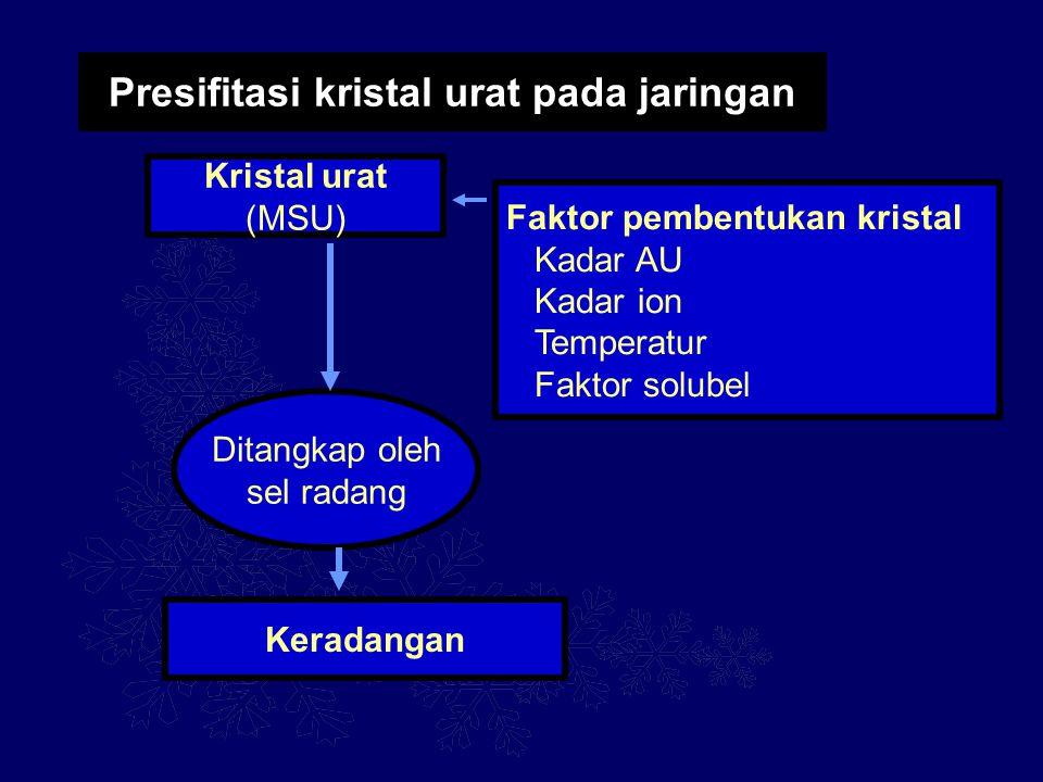 Presifitasi kristal urat pada jaringan Kristal urat (MSU) Faktor pembentukan kristal Kadar AU Kadar ion Temperatur Faktor solubel Keradangan Ditangkap