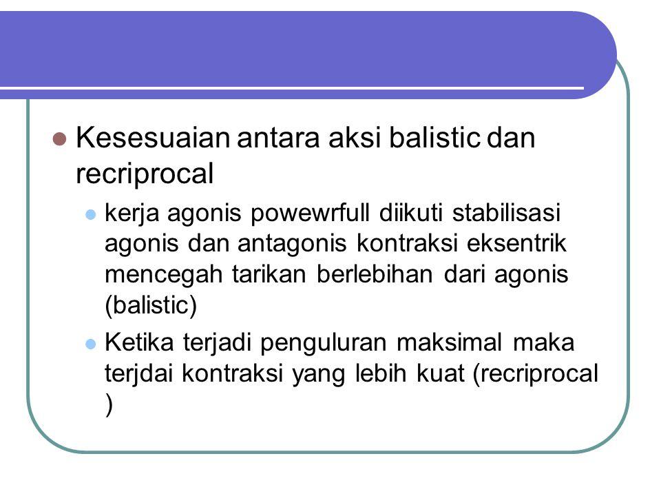 Kesesuaian antara aksi balistic dan recriprocal kerja agonis powewrfull diikuti stabilisasi agonis dan antagonis kontraksi eksentrik mencegah tarikan