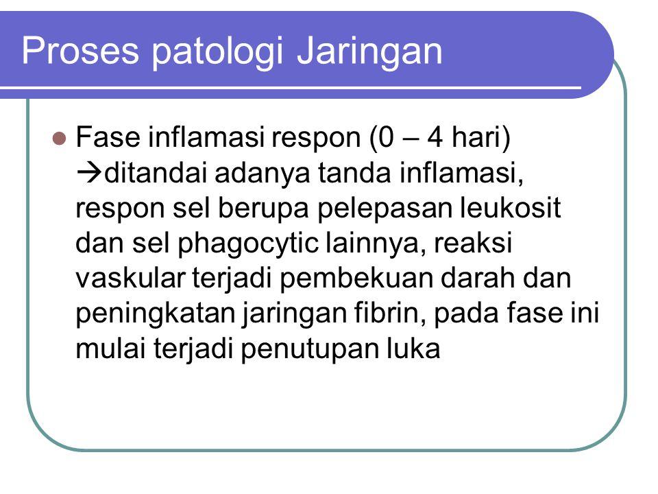 Proses patologi Jaringan Fase inflamasi respon (0 – 4 hari)  ditandai adanya tanda inflamasi, respon sel berupa pelepasan leukosit dan sel phagocytic