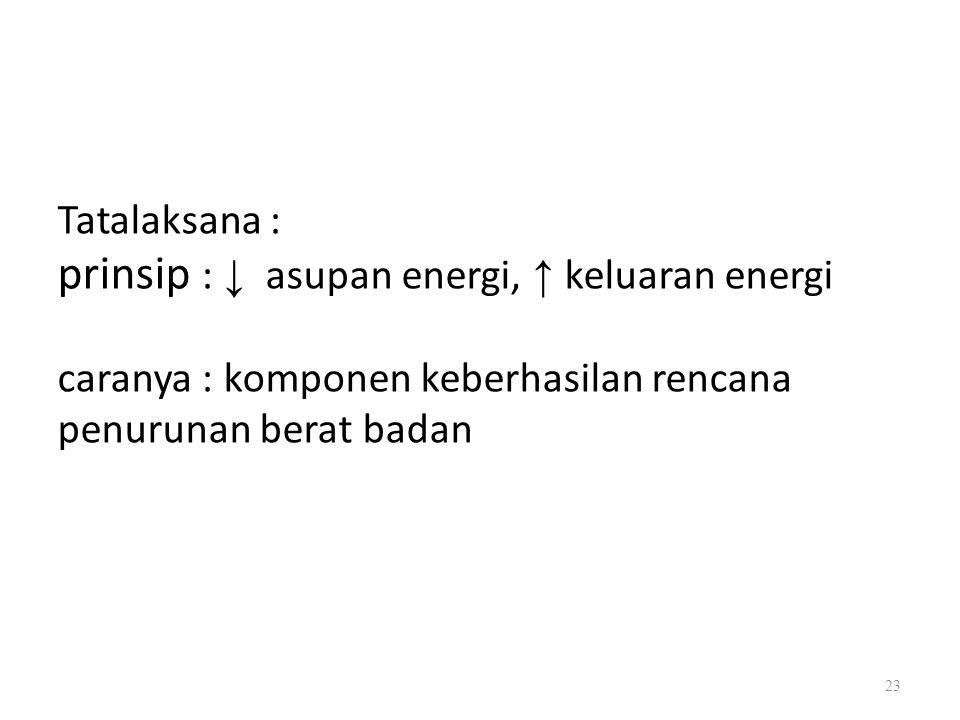 Tatalaksana : prinsip : ↓ asupan energi, ↑ keluaran energi caranya : komponen keberhasilan rencana penurunan berat badan 23